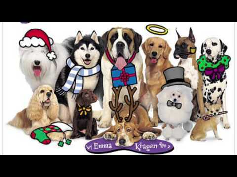 The Twelve Dogs Of Christmas  Emma Kragen Read Description‼️❗️‼️