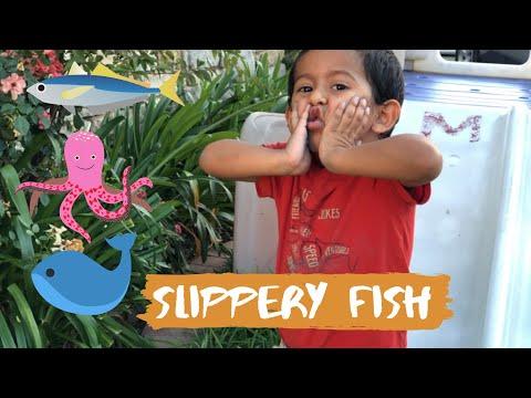 Matiasaurus And Slippery Fish Vídeo #11