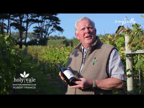 Meet Robert Francis from Holyvale Winery, St Mary