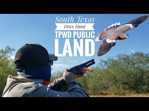 South Texas Dove Hunt | TPWD Public Lands At Resaca De La Palma State Park [Explicit Language]
