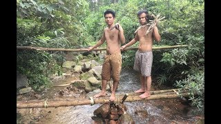Primitive Technology: The Bridge Construction