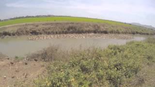 Ba Ria Duck Farm, VietNam