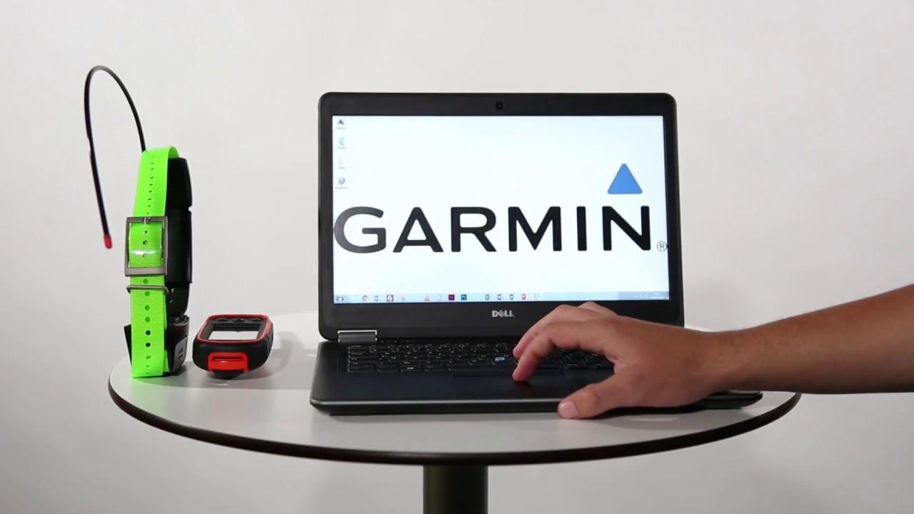 Garmin Alpha - Mettre à jour son Alpha et ses colliers avec Garmin  WebUpdater