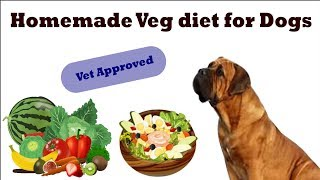 Homemade Veg Diet plan for dogs/puppy ( in Hindi )