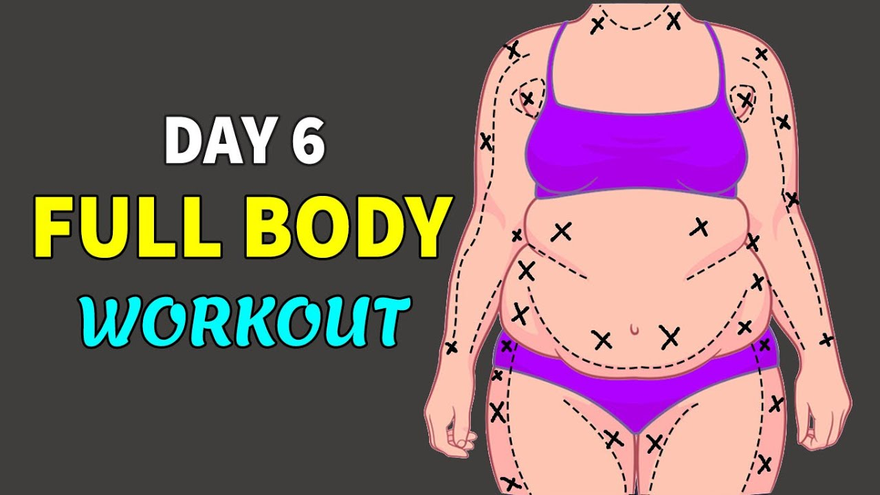 DAY 6   FAT TO FIT AT HOME   NO JUMP, NO SQUAT, NO LUNGE   12 DAYS WORKOUT PLAN