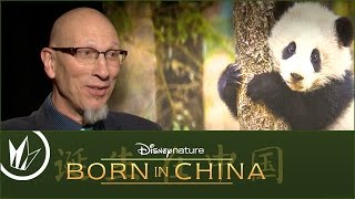Sit Down With the Stars: Born in China – Regal Cinemas [HD]