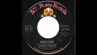 Amanda Ambrose - Green Plant (1968)