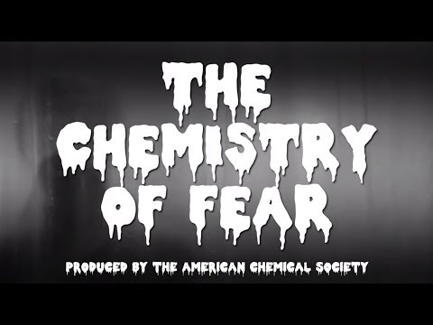 'Chemistry Of Fear' VIDEO Explains Science Behind Brain's Response To Dangerous Situations