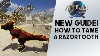 Atlas: DINOSAUR TAMING? How To Tame The Razortooth! Strongest Animal In Atlas??