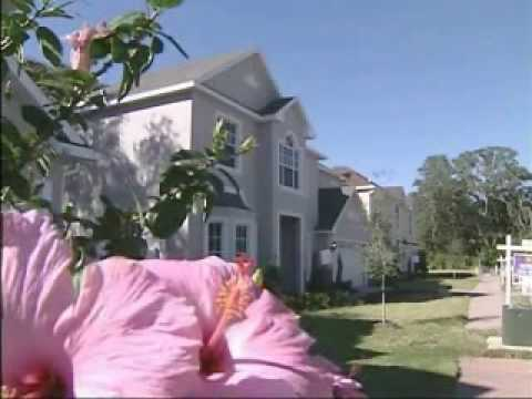 Tampa Bay Real Estate News on WFTS-TV