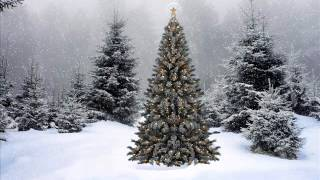 Christmas Alphabet - White Christmas - The Gunter Kallman Choir