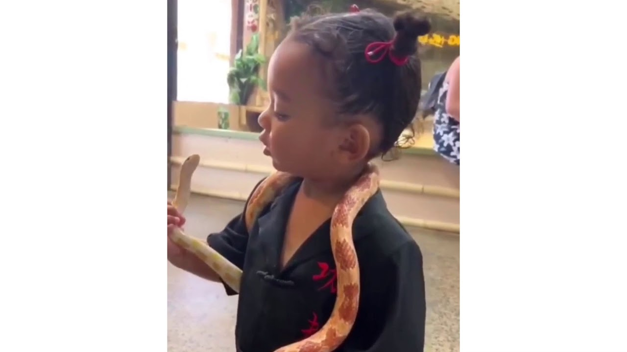 Kim Kardashian Shares A Clip Of Chicago Playing With A Snake!