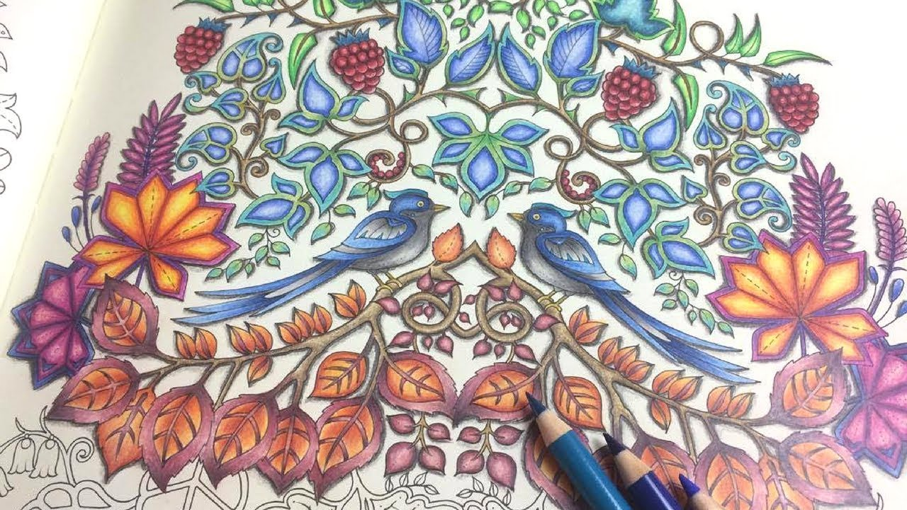 ENCHANTED FOREST COLOUR ALONG PART 2 FABER CASTELL POLYCHROMOS