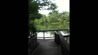Walking along the River Boardwalk Part 2, Meads Quarry, Knoxville, TN,06/24/14