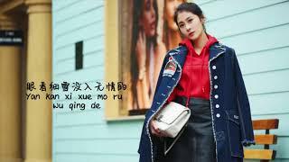 Diamond Zhang 张碧晨-Ting Xue听雪Lyrics(Pinyin)