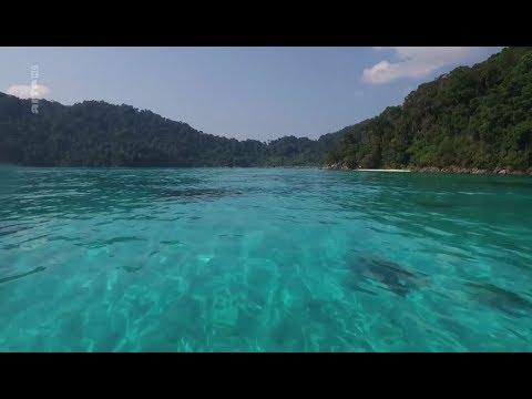 Pecheurs d'aujourd'hui - Thailande : le monde disparu des nomades de la mer