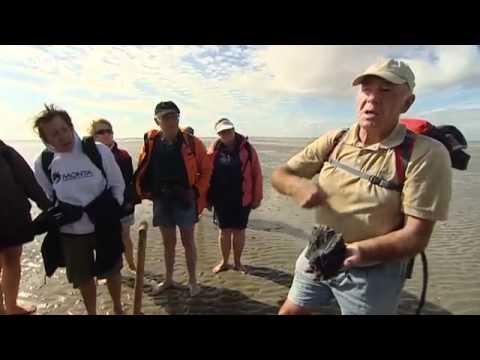 Wattenmeer - Erholung im Rhythmus der Natur | UNESCO Welterbe