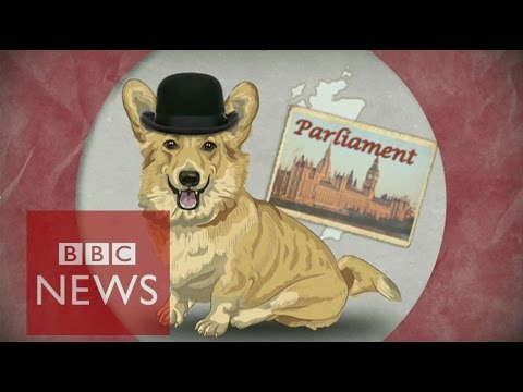UK election: A guide for non-Brits - BBC News