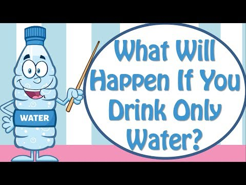 5 Explanations Why Water Will work for Weight Reduction