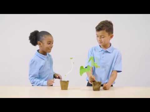 Cambridge Primary Science Digital Classroom Stage 1 – Plants