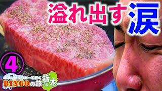 【最高級ステーキ】前代未聞の大事件「キャンピングカーで行く BINGOの旅in栃木④」