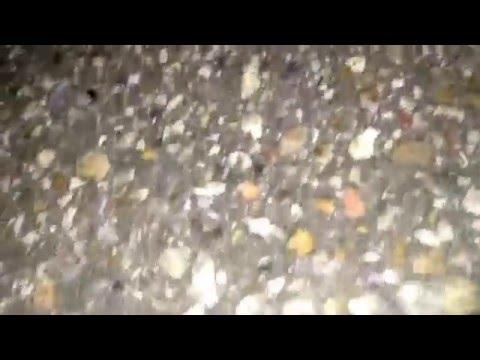 Traxxas Grave Digger Crash (iPhone Video)