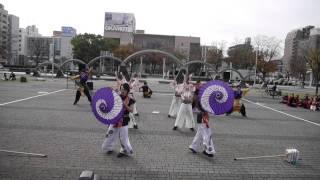 2015/11/29 第11回四日市よさこい祭り やったろ舞.