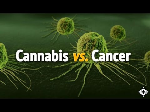 The Effects of Cannabis on Cancer: Brain Cancer