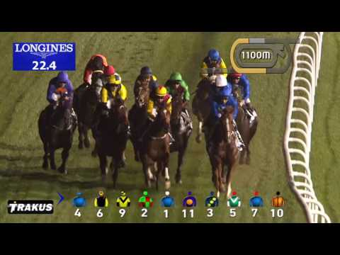 Race 2 Meydan Classic Sponsored by Al Naboodah Goodyear