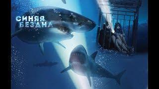 VLOG: Синяя бездна, акулы, читай город!