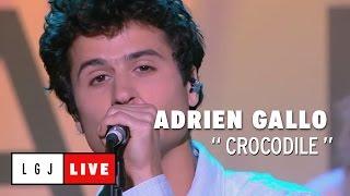 Adrien Gallo - Crocodile - Live du Grand Journal