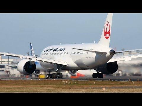ANA x JAL BOEING 787 DREAMLINER [全日空 x 日本航空]