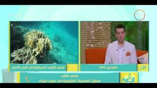 مسئول المحميات الطبيعية يوضح عقوبة إفساد الشعب المرجانية في مصر
