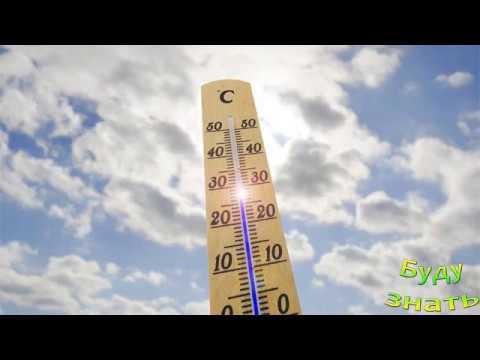 Вопрос: Каким лучше термометром измерять температуру почвы на даче?