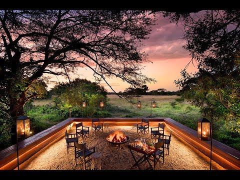 Celebrating 20 Years of African Safari Expertise