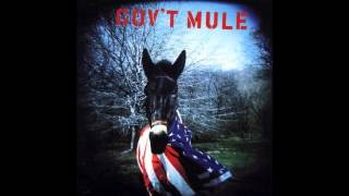 Watch Govt Mule Grinnin In Your Face video