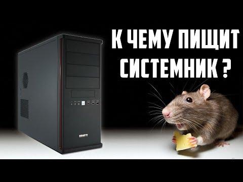 Компьютер не включается и пищит как жирная мышка