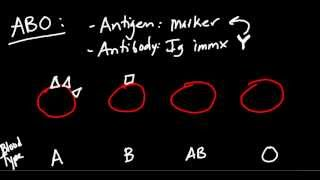 Repeat youtube video Blood Type (ABO and Rh) Made Simple!