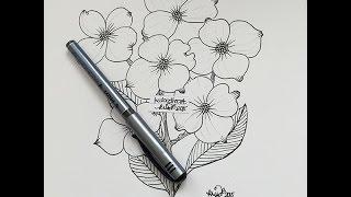 how I draw a dogwood bloom