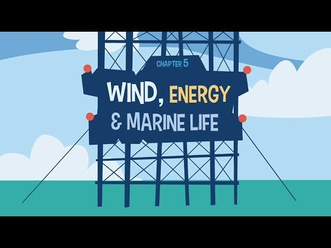 Marine renewable energy: ResponSEAble European project