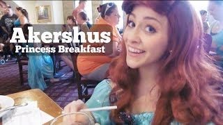 Akershus Princess Breakfast | DCP Fall 2015