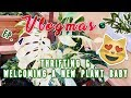 THRIFTING & WELCOMING A NEW PLANT BABY   VLOGMAS EP. 4