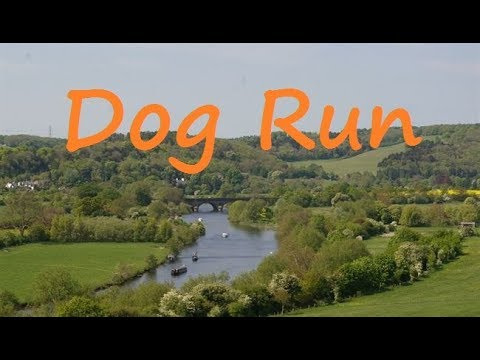 Dog run in Goring, Oxfordshire