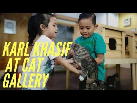Karl Khasif  Seri Talam Cat Gallery