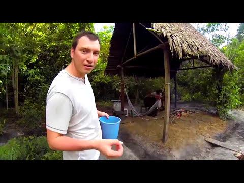 How To Make Ayahuasca Tea - The Amazonian Great Medicine