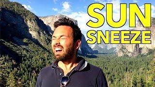 The Sun Sneeze Gene thumbnail