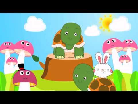 เพลงเต่า พร้อมภาพการ์ตูนน่ารัก | เพลงเด็กในตำนาน