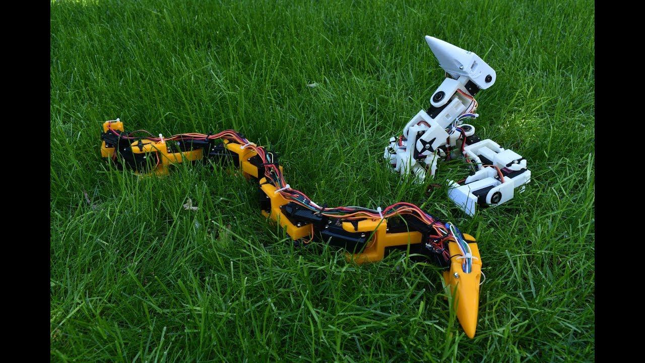 hight resolution of bioinspired robotic snake