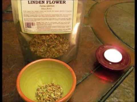 Шалфей лекарственный (трава)– полезные свойства и