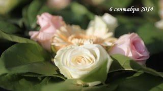 Свадьба Сергея и Анастасии. 6 сентября 2014